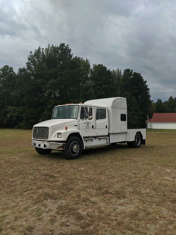 1999 FREIGHTLINER MED CONV FL80 for sale by dealer